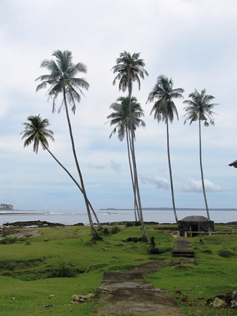 benteng-pertahanan-di-desa-naibos
